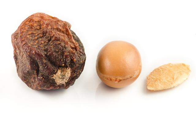 argan-nut